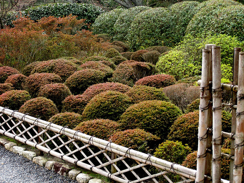 Les cl tures japonaises traditionnelles 1 jardins du japon et d 39 ailleurs - Barriere infrarouge jardin ...