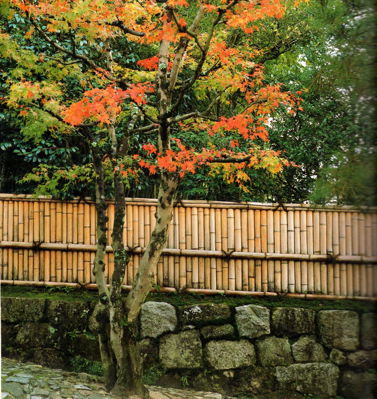 Les cl tures traditionnelles japonaises 2 jardins du japon et d 39 ailleurs - Barriere infrarouge jardin ...