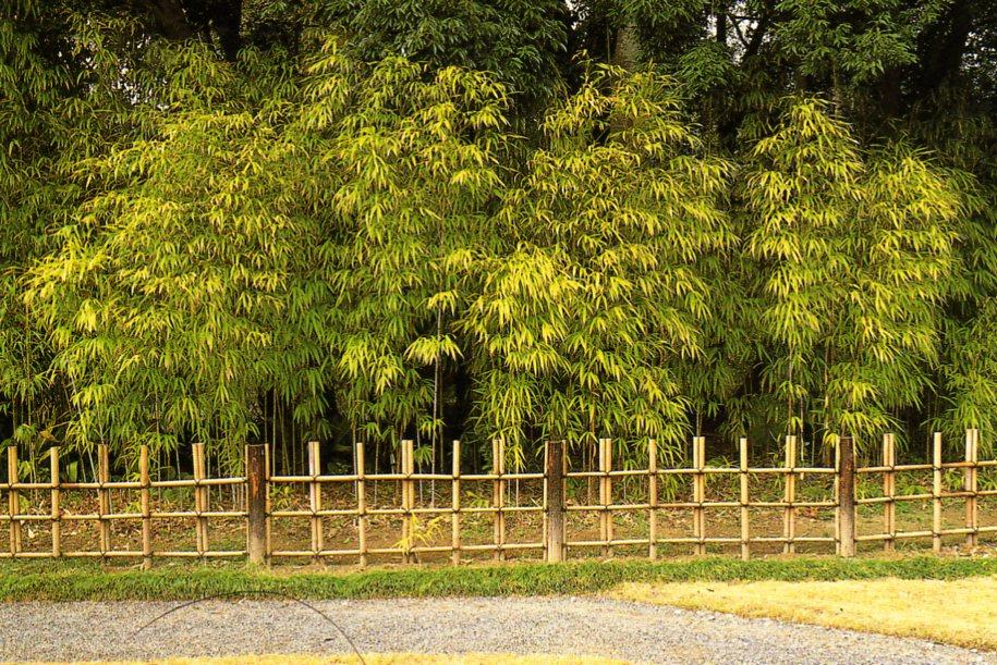 Les clôtures traditionnelles japonaises (2)   Jardins du Japon et ...
