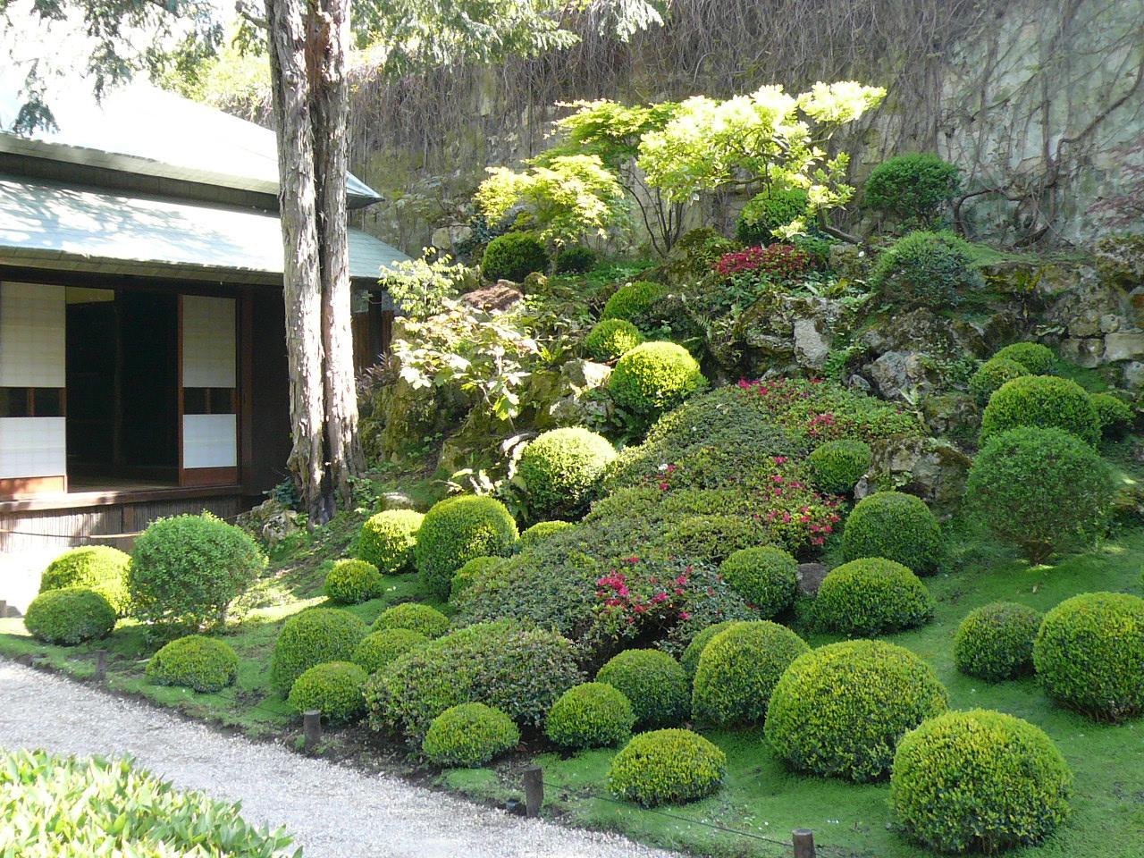 Printemps au jardin albert kahn jardins du japon et d - Le jardin d erables ...