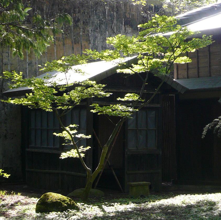 Printemps au jardin albert kahn jardins du japon et d 39 ailleurs for Petite salle de bain japonaise