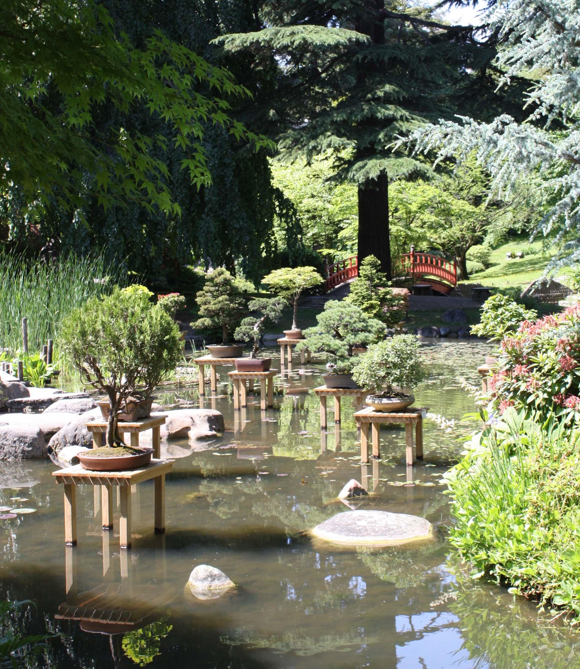 Bonsa s aux jardins albert kahn jardins du japon et d for Le jardin aux epilobes