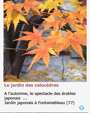 JARDIN JAPONAIS A FONTAINEBLEAU