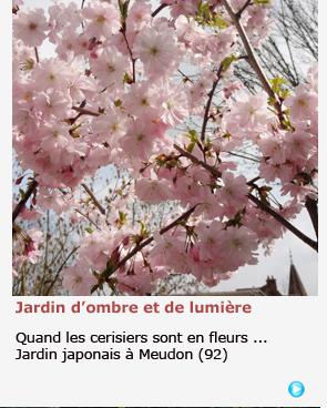 JARDIN JAPONAIS A MEUDON