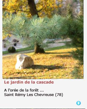 JARDIN JAPONAIS A SAINT-REMY-LES-CHEVREUSE
