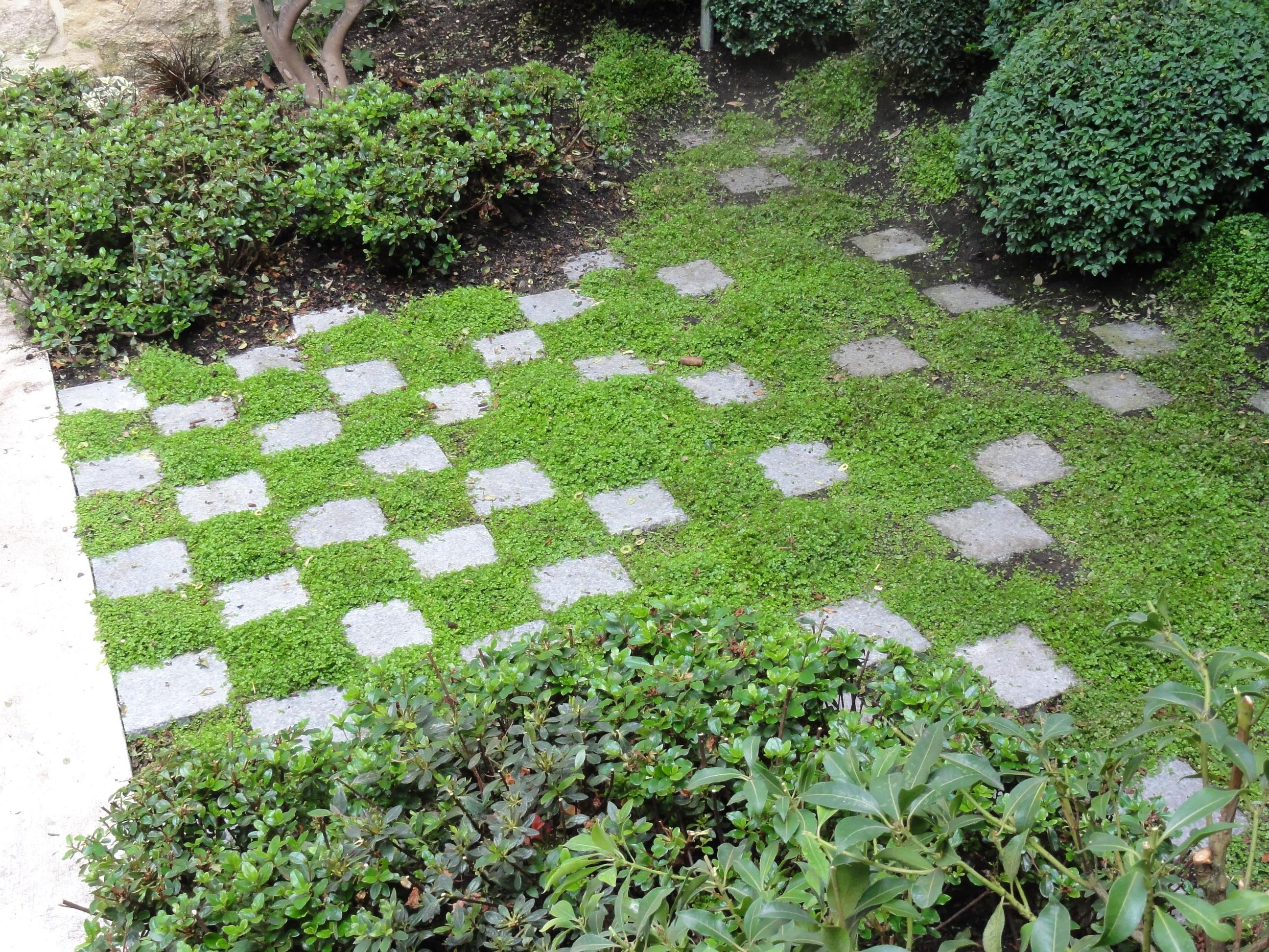 Projets de jardins et de terrasses japonaises jardins du for Jardin japonais yvelines