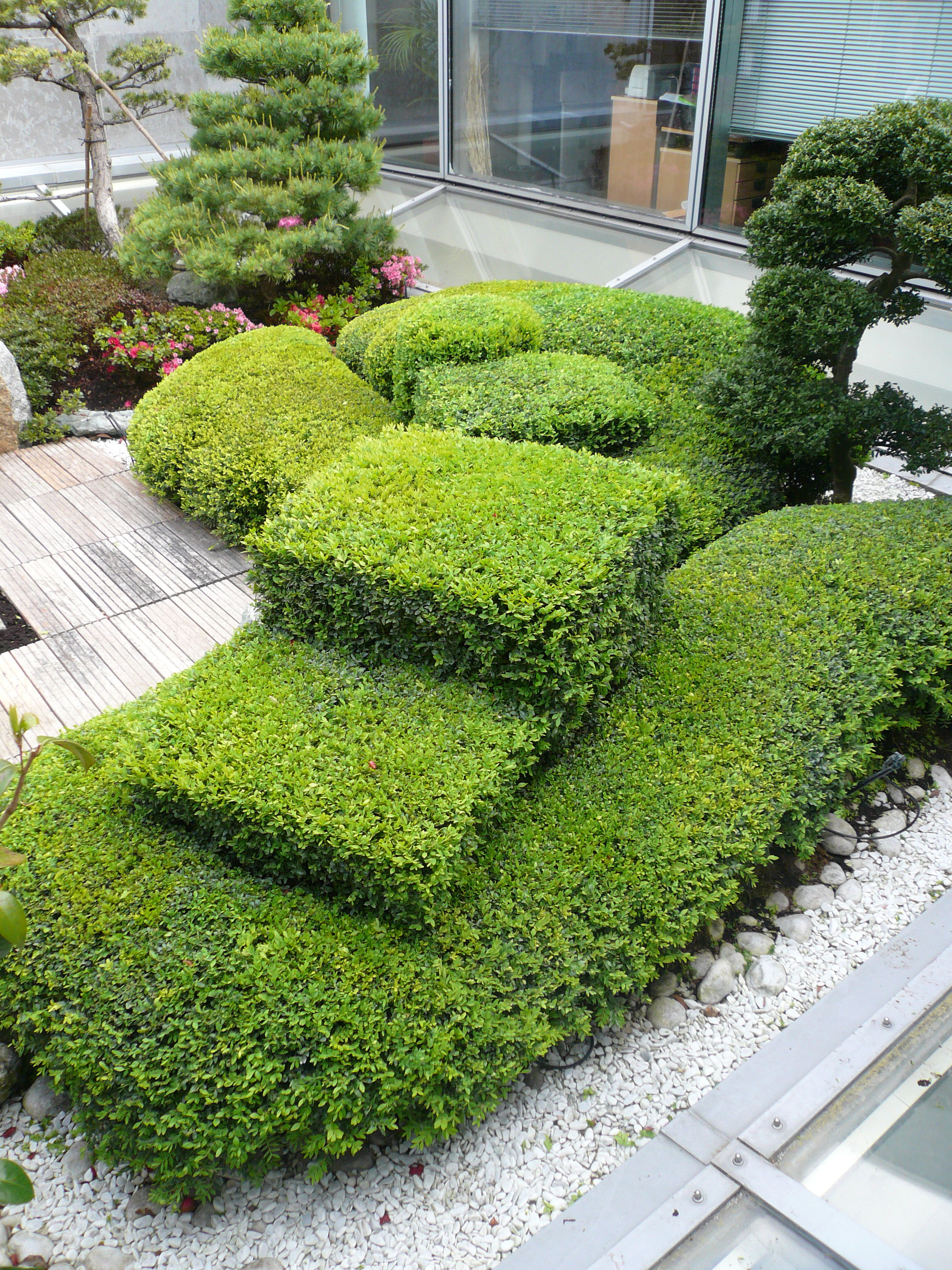 projets de jardins et de terrasses japonaises jardins du japon et d 39 ailleurs. Black Bedroom Furniture Sets. Home Design Ideas