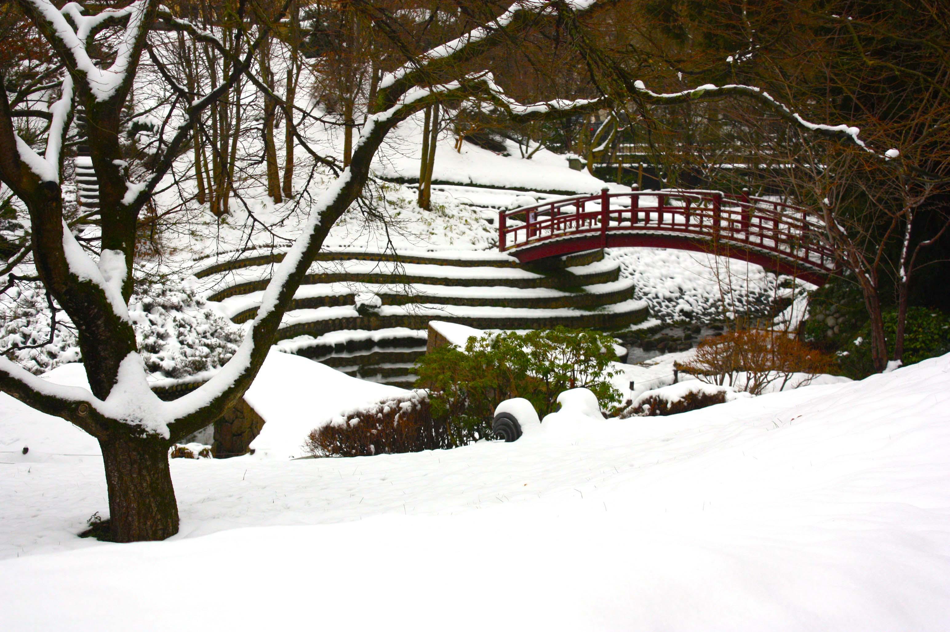 Jardin japonais Albert Kahn sous la neige