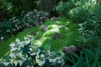 Dans cette partie ombrée du jardin, le soleil diffuse pour éclairer une composition de pierres qui symbolise un phoenix