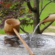 Jardins du Japon et ... d\'ailleurs | Architecte-Paysagiste à ...