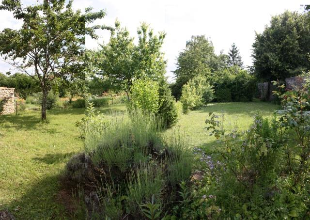 Jardin potager avant