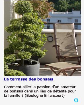 Terrasse des bonsaïs