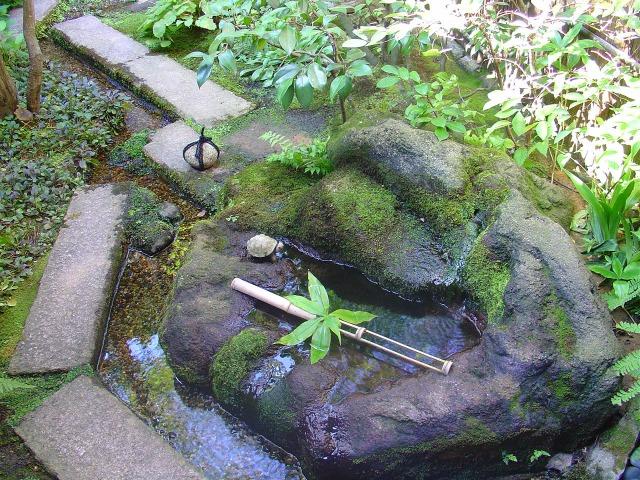 Tsukubaï et petite tortue