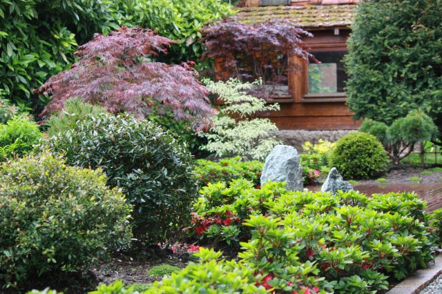 Jardin japonais rouge ambiance