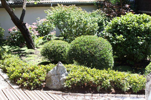 Jardin japonais rouge en été