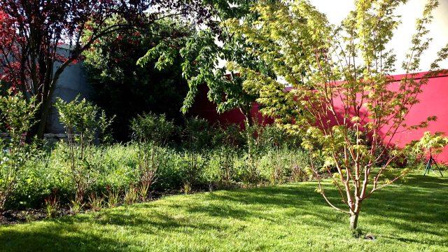 Jardin japonais rouge mur rouge
